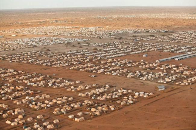 Somali repatriation process must be voluntary in Kenya: UN