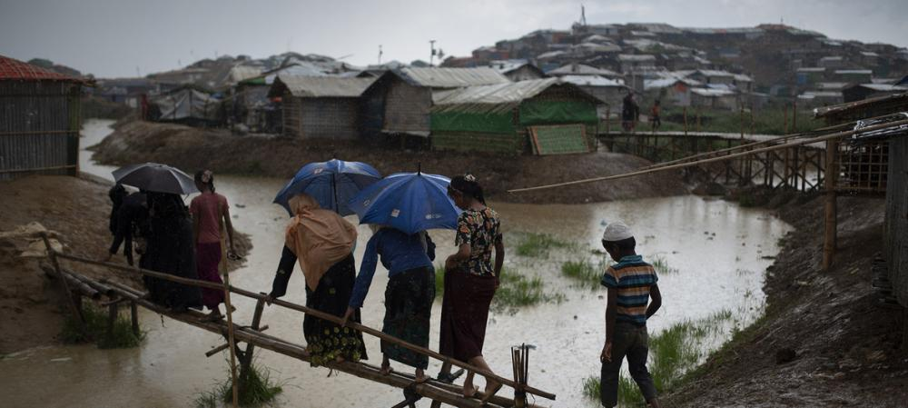 New project safeguards Rohingya refugees; boosts local farming – UN migration agency