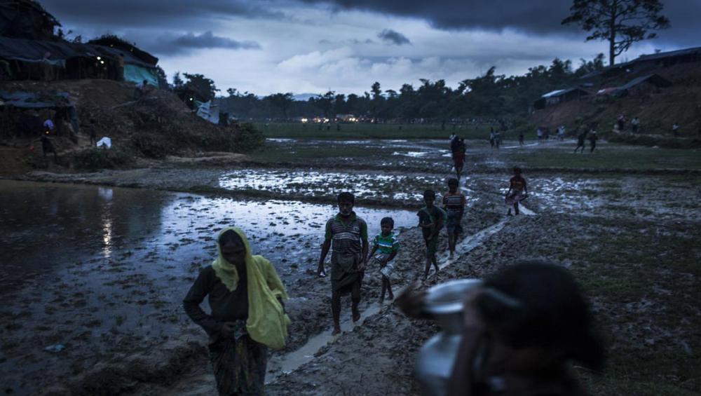 'Terror and panic' among Rohingya who may be forced to return to Myanmar – UN rights chief
