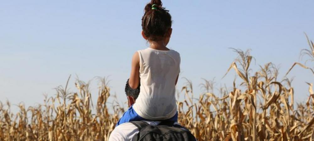 Nearly 1,600 migrant children reported dead, missing between 2014 to 2018: IOM