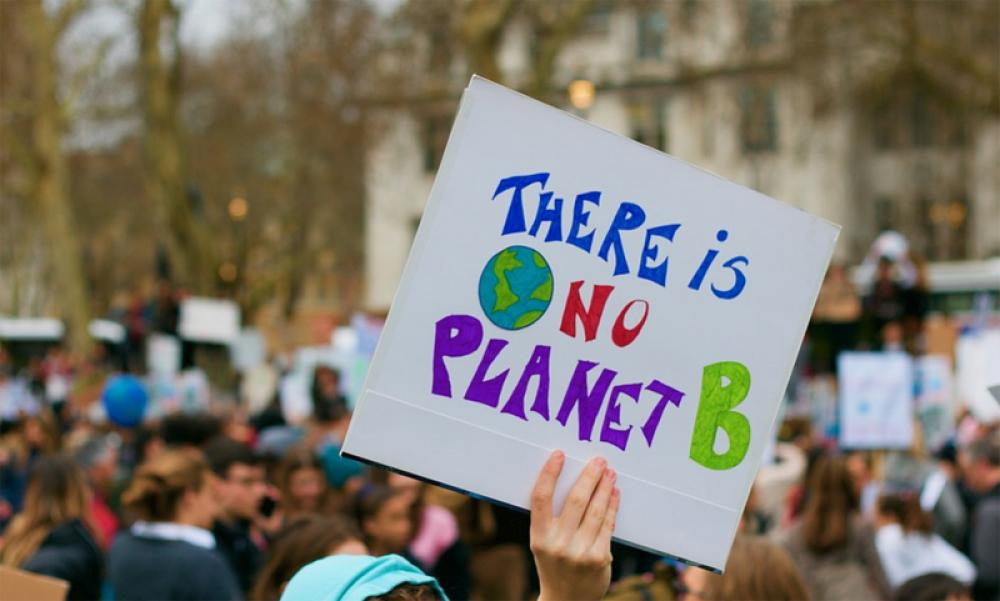 Record 212 land and environment activists killed in 2019, says independent watchdog Global Witness